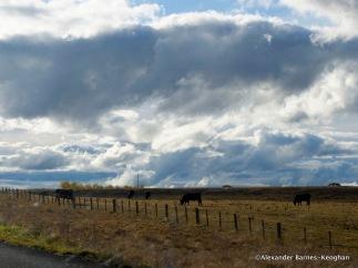 Thunderbolts Way (2015) NSW, Australia