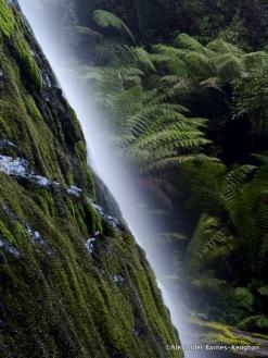 Marriott's Falls (2015) Tasmania, Australia