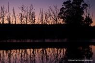 Hue (2015) Central Highlands, Tasmania, Australia