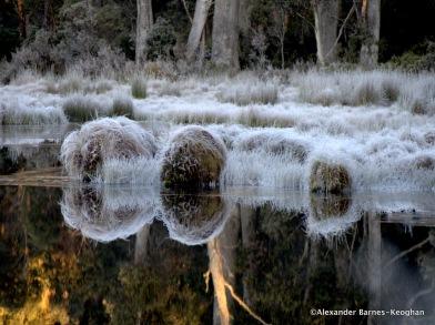 Ice Balls (2015) Central Highlands, Tasmania, Australia