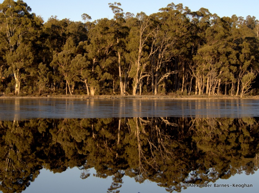 Reflex (2015) Central Highlands, Tasmania, Australia
