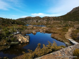 Tarns (2015) Mount Field National Park, Tasmania, Australia