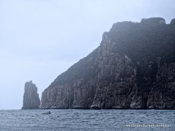 Cape Raoul (2017)